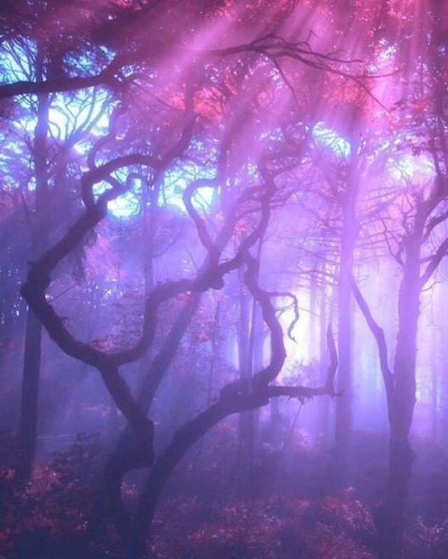 День друзей, картинки в фиолетовом цвете тамблер