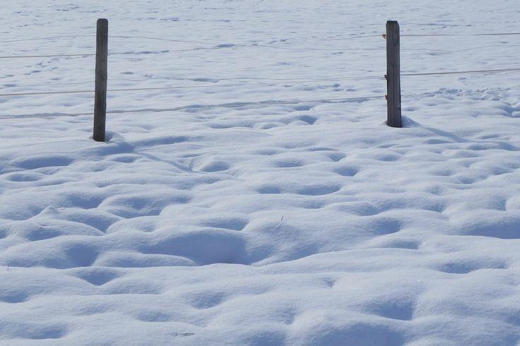 schnee und pfoschte