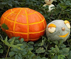Make Kooky Pumpkin Creatures: The Tortoise and the Hare (via Parents.com)