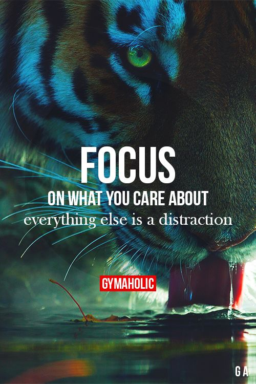 gymaaholic:  Focus On What You Care About Everything else is a distraction. Stay focus on your goals and you will achieve them. http://www.gymaholic.co