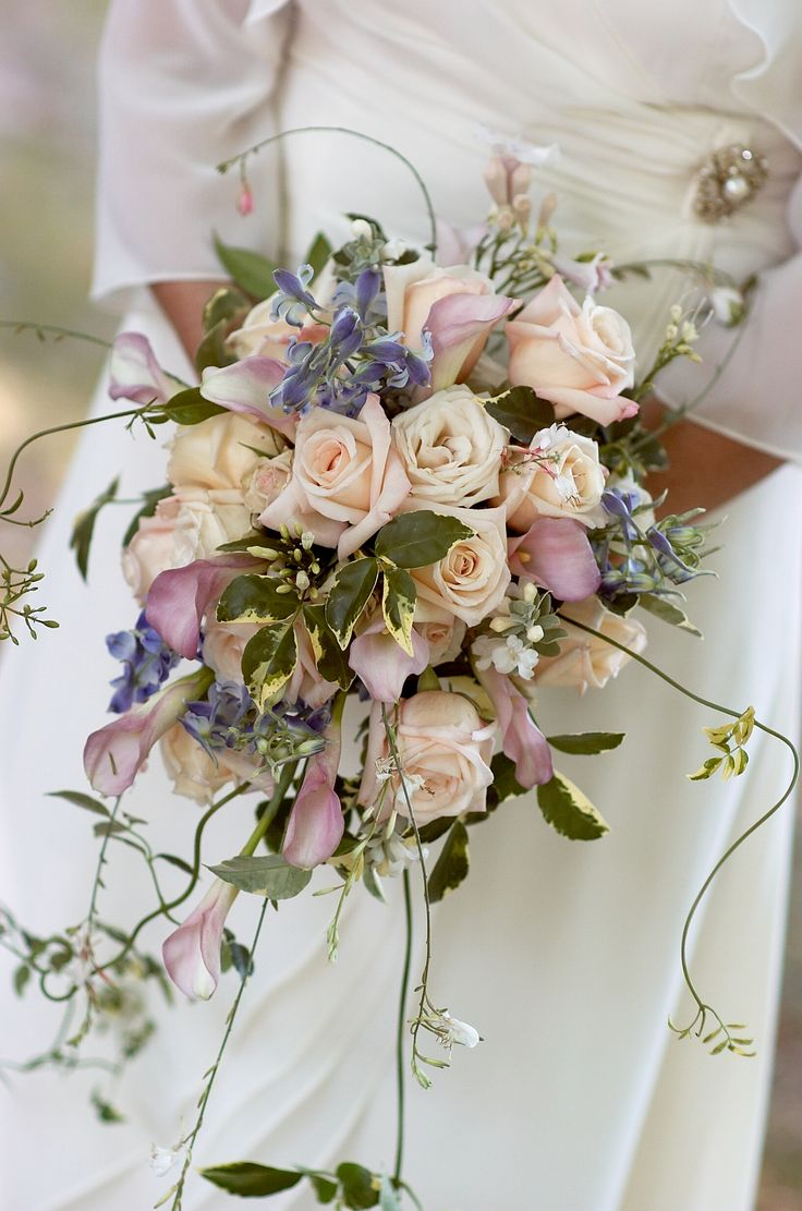 lush summery cascade bouquet ~ anna roses, blush pink calla lilies, blue delphinium, accented by light fresh green foliage & jasmine vines ~ designed by   www.anikdesigns.com