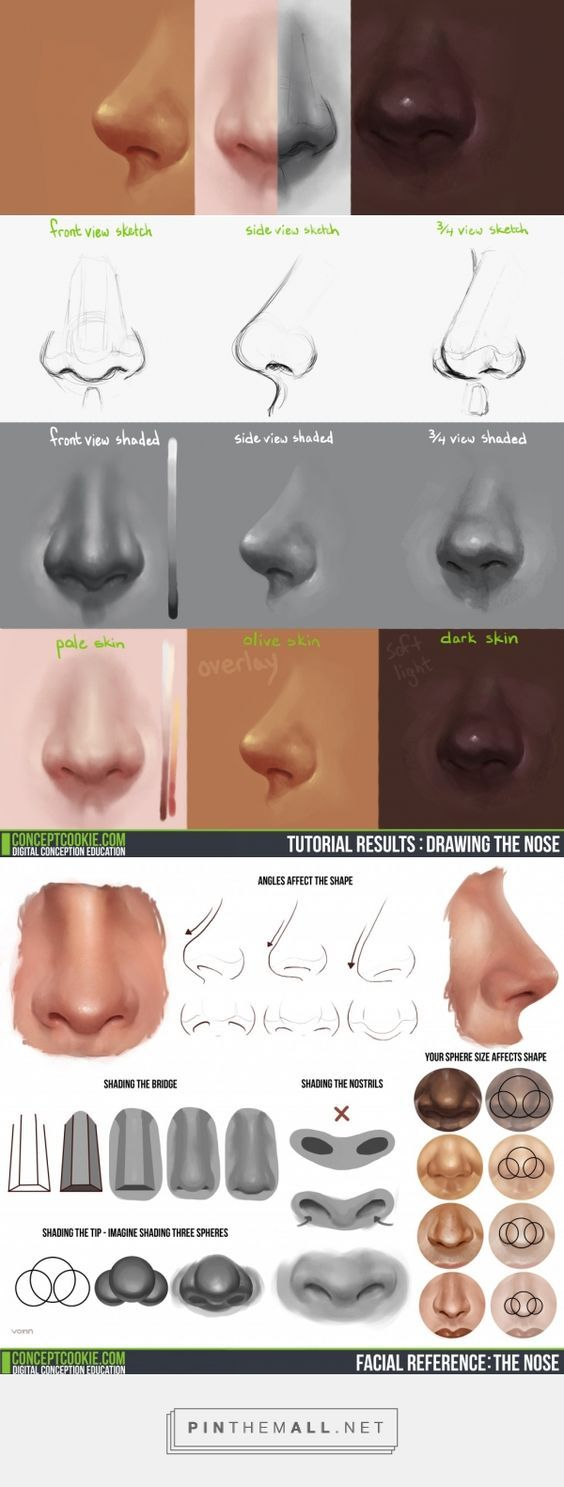 Tim Von Rueden takes you through drawing the nose in a front, side, and ¾ view: http://conceptcookie.tumblr.com/post/87229828821/drawing-the-nose-v… | Pinterest