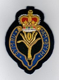 The badge of the Welsh Guards with a leek, national emblem of Wales, at the centre. (Historic UK)