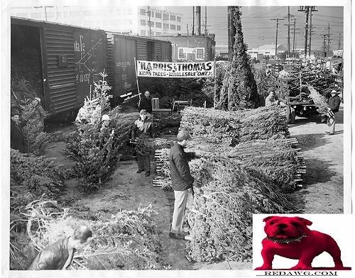 53 best TreeMapLA - Historic Los Angeles images on Pinterest ...