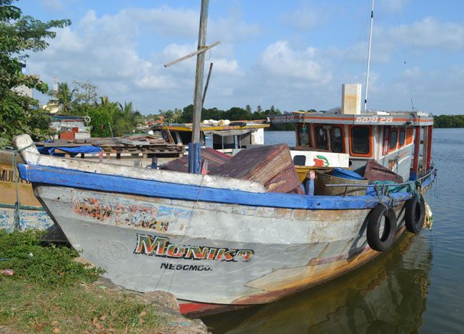 Negombo Lagoon on Stopover in Colombo Airport on Sri Lanka Transit VISA.  Check our blog for full story of our South Sri Lanka Tour and Guide for Independent Travel in Southeast Asia. Here: http://live-less-ordinary.com/southeast-asia-travel/south-sri-lanka-tour-independent-travel