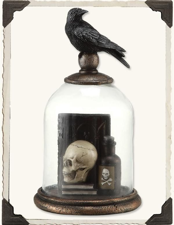 edgar allen poe nevermore raven bell jar - Raven Halloween Decorations