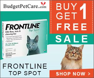 A monthly spot-on treatment for 8 weeks and older kittens and cats, Frontline Top Spot is an effective solution for fleas, ticks and chewing lice.