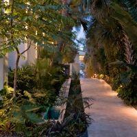Raymond Jungles, Inc., path, side yard