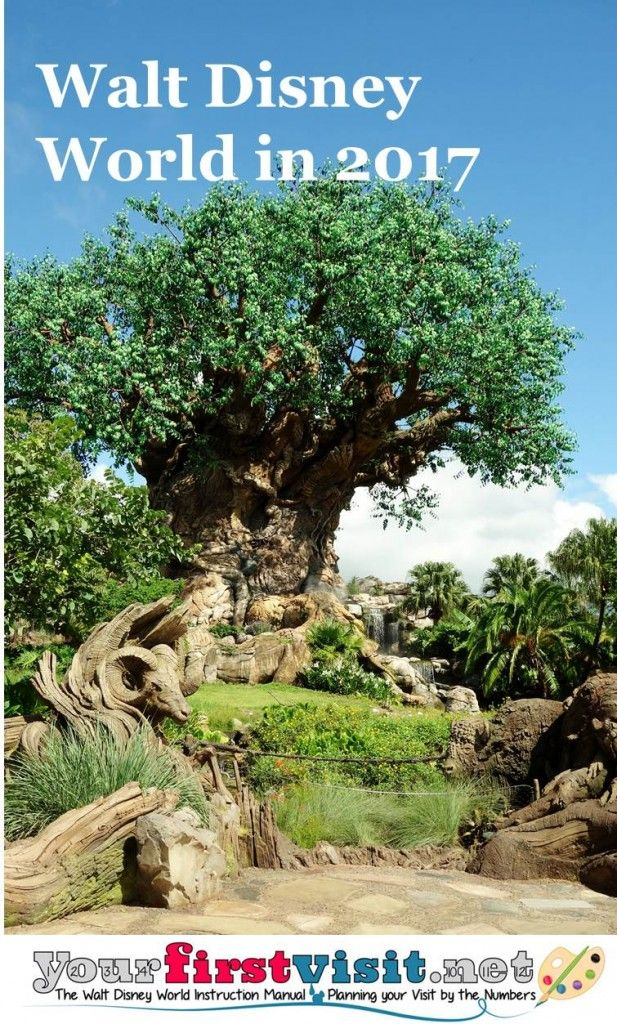 Here are my thoughts on rides, hotels, crowds and such at Disney World in 2017. 2017 will see a deep transformation at Disney's Animal Kingdom, as the new land Pandora opens early in the year