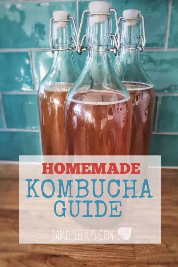 Homemade Kombucha Guide: What are the benefits of the probiotic bubbly drink? What is a SCOBY? 3 Options on how to make Kombucha from home on a budget!
