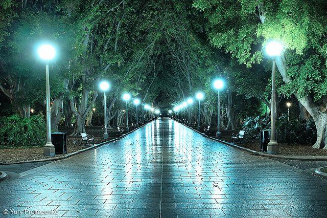 Hyde Park, Sydney CBD, Australia