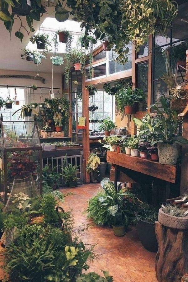 Room Inspiration Labels Beautiful Interior Design Layout Room Room Design Room Ideas Roomporn Beautiful A Wooden Greenhouses Shed Design Greenhouse Interiors