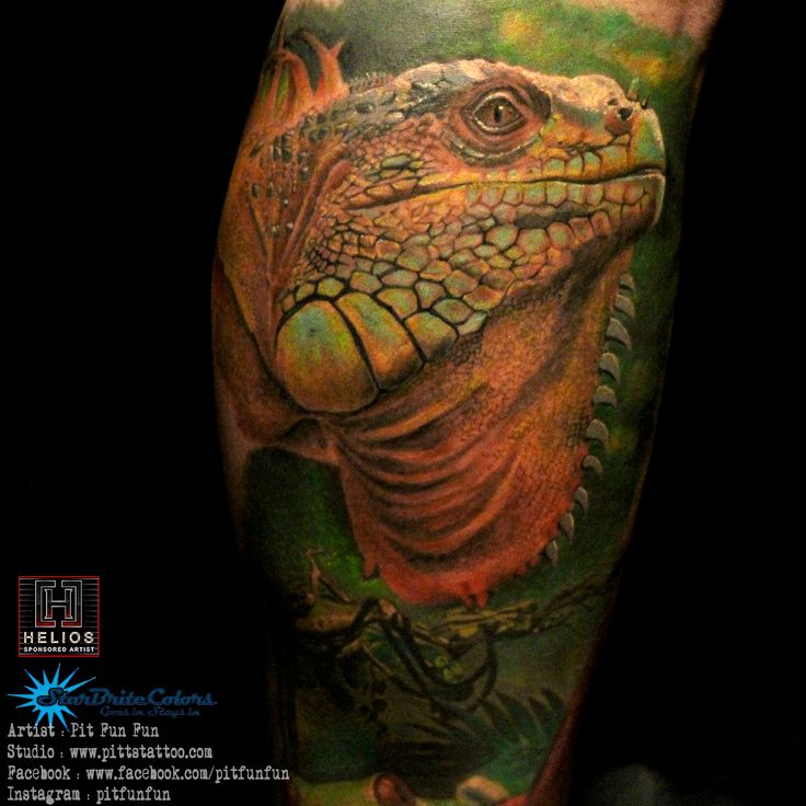 17 best ideas about iguana tattoo on pinterest iguanas gecko tattoo and lizard tattoo. Black Bedroom Furniture Sets. Home Design Ideas