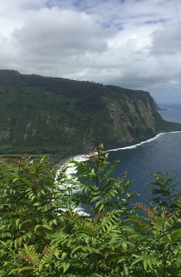 Finding an ideal spot for a gay wedding or honeymoon on the Big Island | Expedia Viewfinder Travel Blog