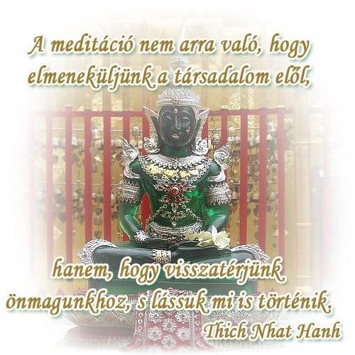 A meditáció nem arra való, hogy elmeneküljünk a társadalom elől, hanem, hogy visszatérjünk önmagunkhoz, s lássuk mi is történik. - Thich Nhat Hanh # www.facebook.com/angyalimenedek