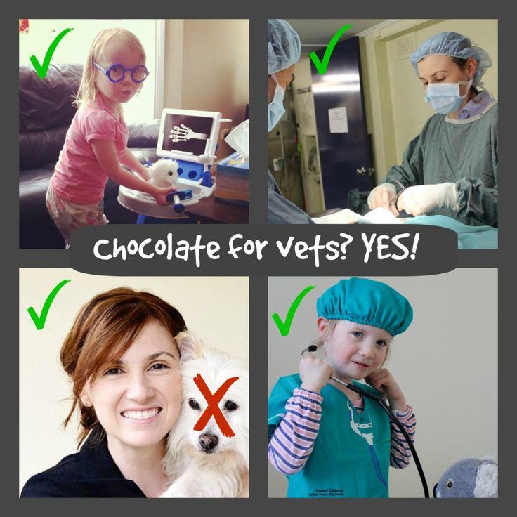 Chocolate for pets? - Dr Belinda The Vet