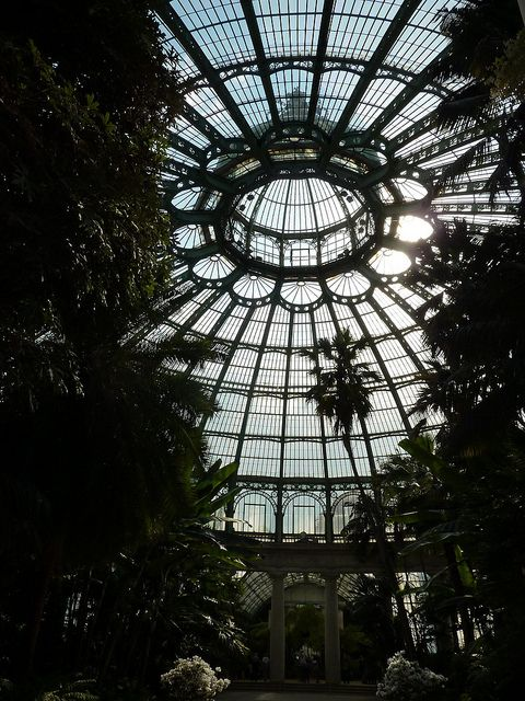 Incredible conservatory ceiling