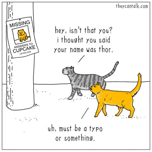 Best Cat And Dog Humor And Cartoons Images On Pinterest - 10 funny illustrations every dog owner will relate to
