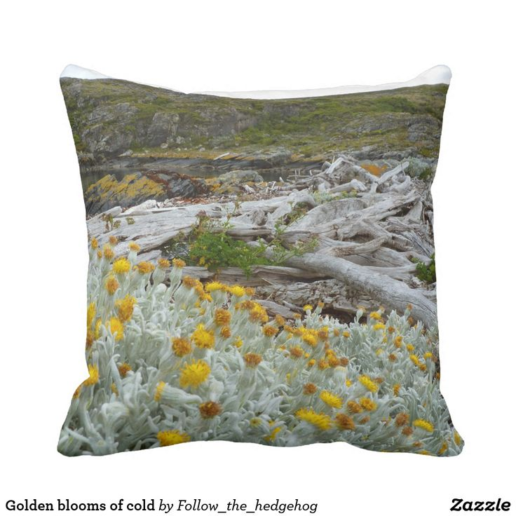 Golden blooms of cold throw pillow Golden blooms of cold on a white bush. Evocative bleached trees next to the dark cold waters of the Beagle Channel. Picture taken in H Island, Ushuaia – Argentina
