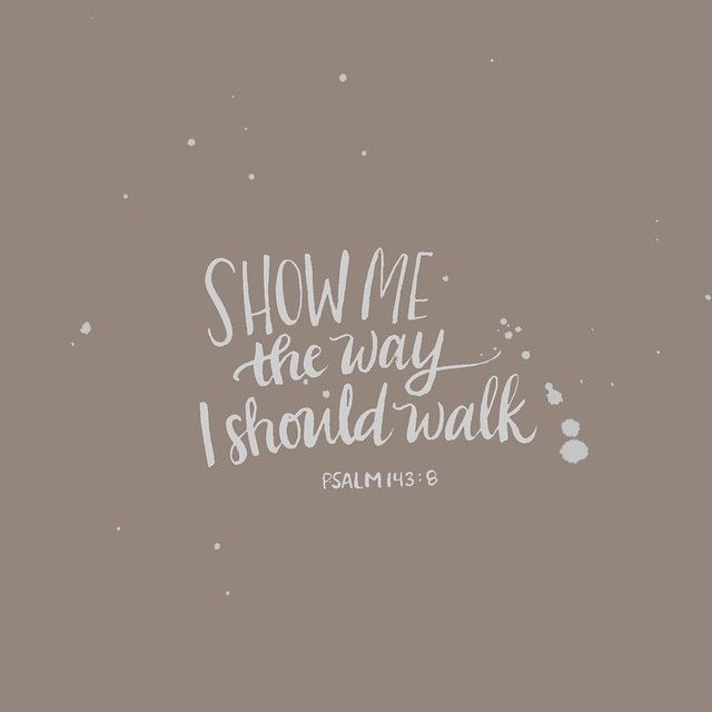 Show me the way I should walk. Psalm 143 v 8