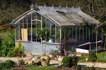 Greenhouse - Hot house