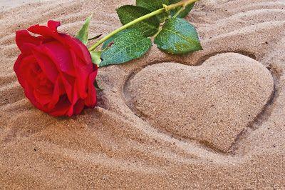 BANCO DE IMÁGENES: Rosa roja tirada en la playa junto a un corazón dibujado sobre la arena