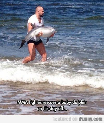 Mma Fighter Rescues A Baby Dolphin