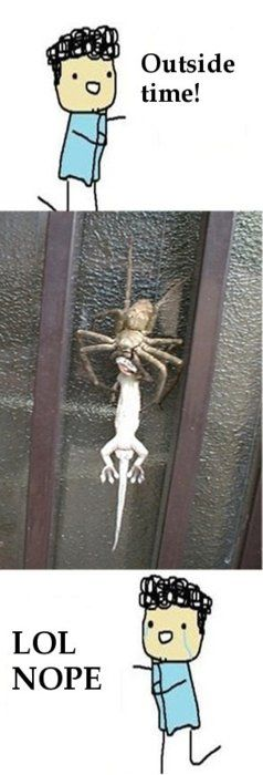 outside time! LOL nope.  spider