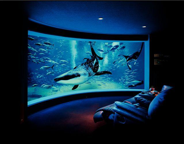 Curved style home cinema room.