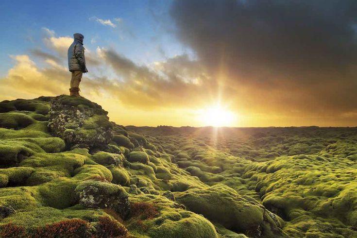 Islanda, la bellezza del paesaggio di Eldhraun non ha prezzo!