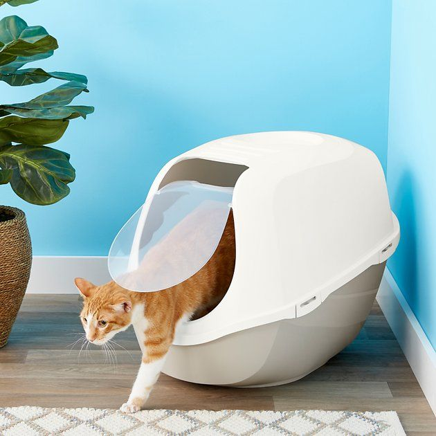Buy Frisco Hooded Cat Litter Box Gray Extra Large 26 In At Chewy Com Free Shipping And The Best Customer Service Litter Box Automatic Litter Box Best Litter Box