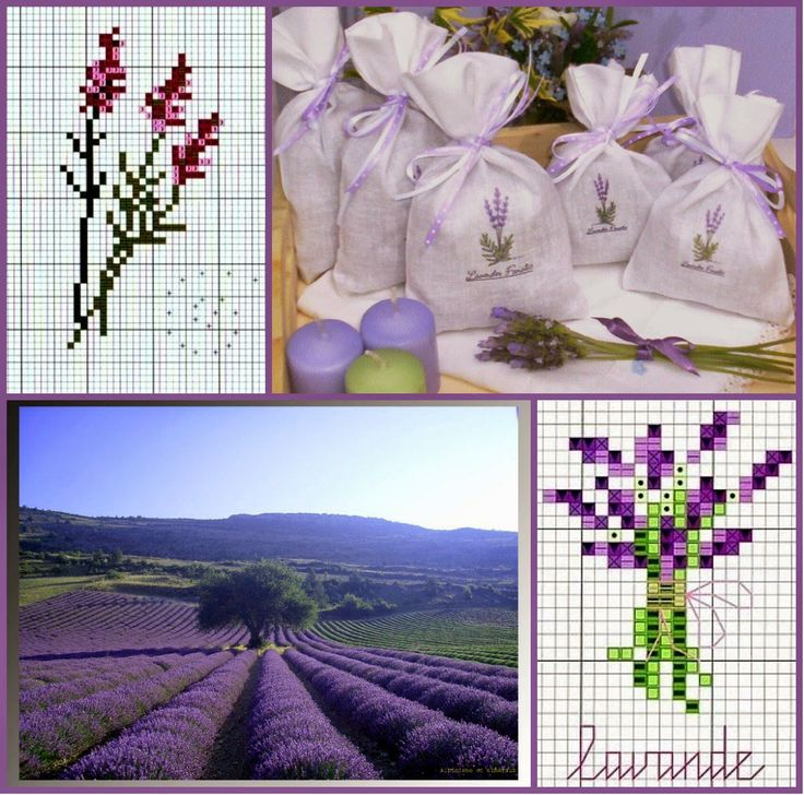 collage+2.jpg 1.200×1.188 pixels