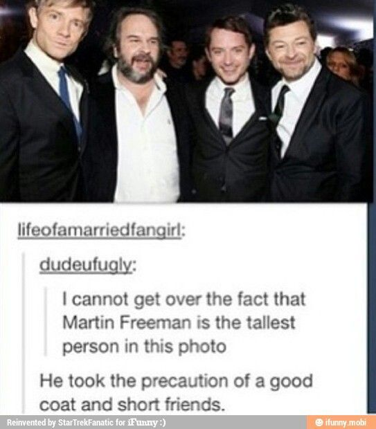 Martin Freeman is the tallest in this photo!