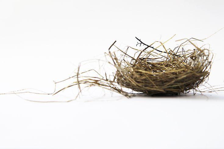 messy-nest