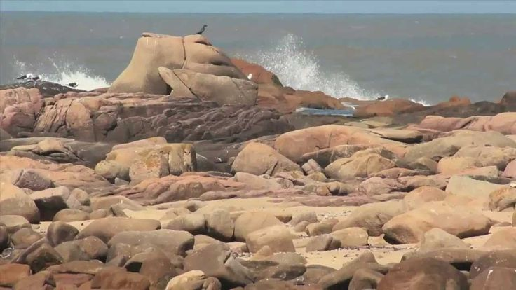 Cabo Polonio en Resistencia 2014(Contrainfos)