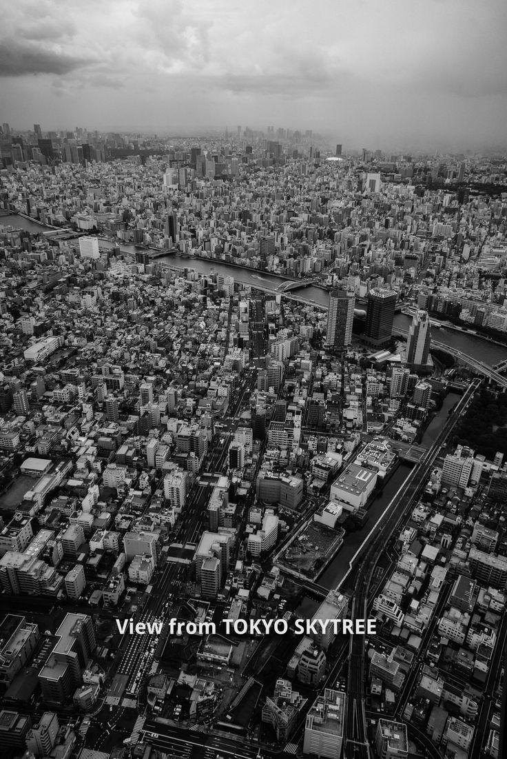東京スカイツリーからの景色 所々ゲリラ豪雨です モノクロ 浅草の亀十のどら焼き最高! 今日もお疲れさまで~す♪