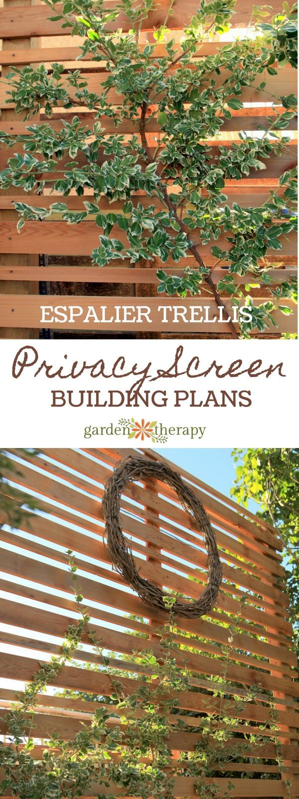 French tuteur trellis woodworking projects amp plans - A Diy Espalier Privacy Screen For The Backyard