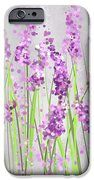 Lavender Blossoms - Lavender Field Painting IPhone Case by Lourry Legarde