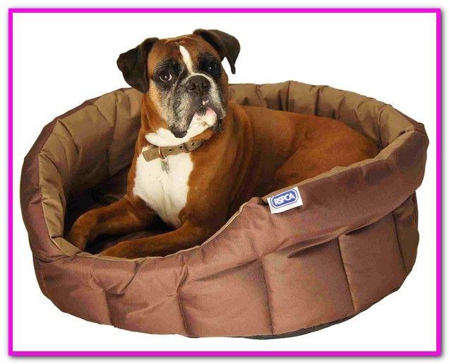 Indestructible Dog Bed Kevlar With Images Indestructable Dog