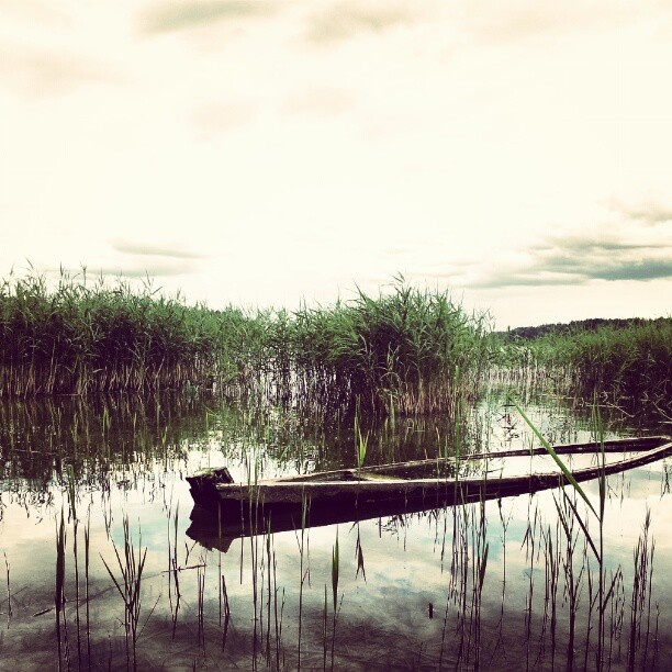 Wigry Lake