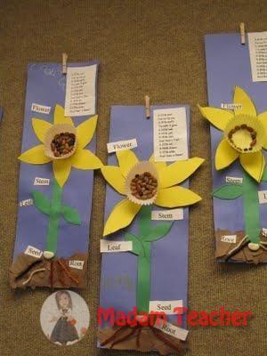 Bitkilerin Büyümesi ve İhtiyaçları  İle İlgili Sanat Etkinlikleri  Bitkilerin Büyümesi ve İhtiyaçları  İle İlgili Sanat Etkinlikleri  Bitkilerin Büyümesi ve İhtiyaçları  İle İlgili Sanat Etkinlikleri  Bitkilerin Büyümesi ve İhtiyaçları  İle İlgili Sanat Etkinlikleri  Bitkilerin Büyümesi ve İhtiyaçları  İle İlgili Sanat Etkinlikleri  Bitkilerin Büyümesi ve İhtiyaçları  İle İlgili Sanat Etkinlikleri  Bitkilerin Büyümesi ve İhtiyaçları  İle İlgili Sanat Etkinlikleri  Bitkilerin Büyümesi ve…