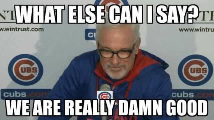 Best 25 Chicago Cubs Memes Ideas On Pinterest Fan