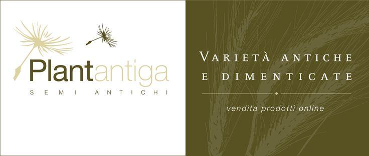 www.plantantiga.com: ricette,curiosità e tanti prodotti da scoprire!