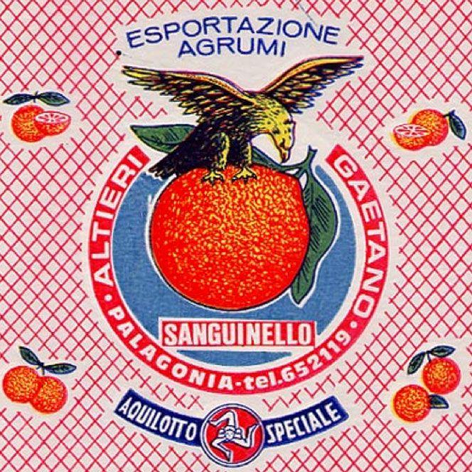 veline-agrumi-animali    #TuscanyAgriturismoGiratola