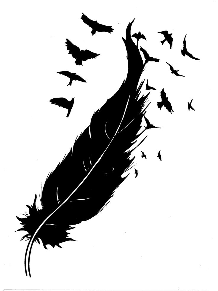 feather into birds sketch for tattoo design tattoo designs ink works. Black Bedroom Furniture Sets. Home Design Ideas