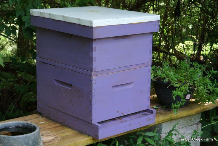 how-to-start-a-honey-bee-farm