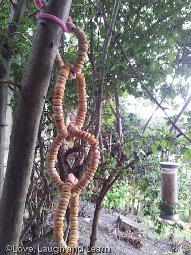 Threaded cereal bird feeders. Fab fine motor activity! Love, laugh and learn.