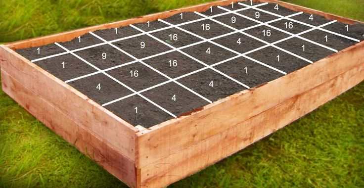 garden above ground above ground garden boxes vegetable gardening