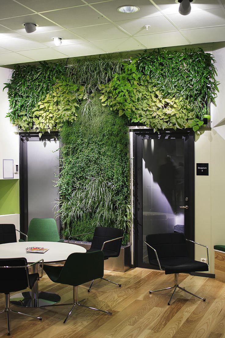 Indoor plantwall at IHM Business School, Stockholm, 2013  ph.Angelica Gunnar