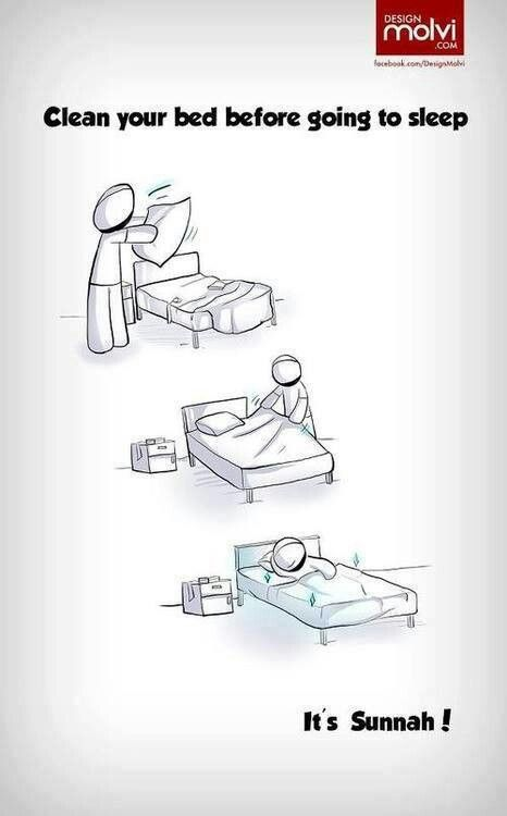 Clean your bed before going to sleep.